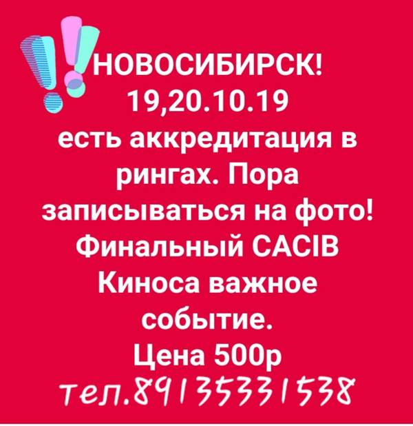 http://sh.uploads.ru/t/VPUcH.jpg