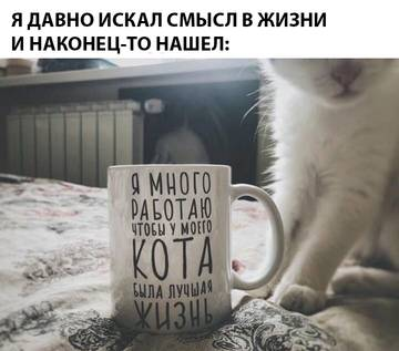 http://sh.uploads.ru/t/VYxBa.jpg