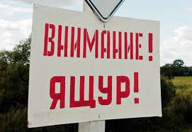 http://sh.uploads.ru/t/VoLi8.jpg