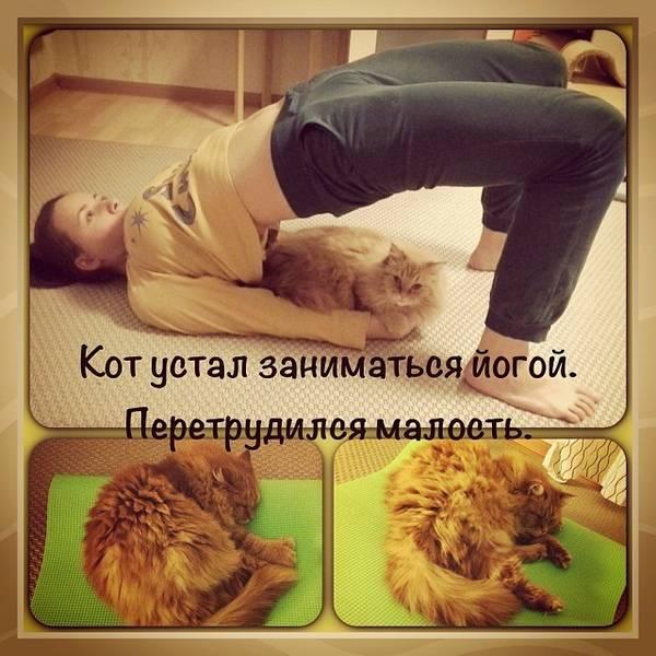 http://sh.uploads.ru/t/VsFPa.jpg