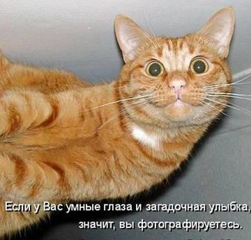 http://sh.uploads.ru/t/VuNed.jpg