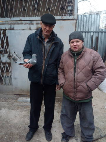 http://sh.uploads.ru/t/WBE34.jpg