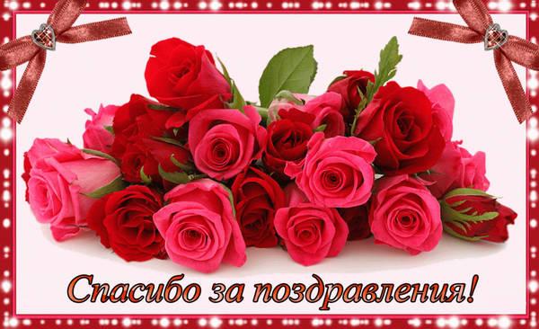 http://sh.uploads.ru/t/WM6jI.jpg