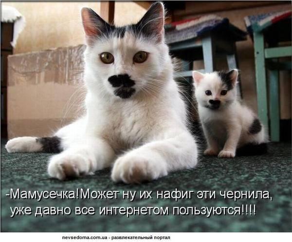 http://sh.uploads.ru/t/Wdz73.jpg