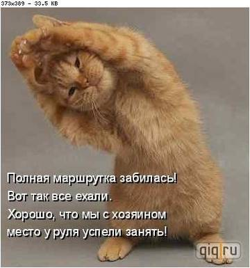 http://sh.uploads.ru/t/WewIC.jpg