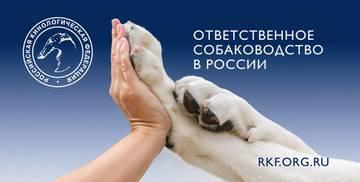 http://sh.uploads.ru/t/WpbvZ.jpg