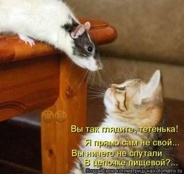 http://sh.uploads.ru/t/Wy1xH.jpg