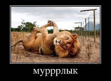 http://sh.uploads.ru/t/X8R2A.jpg