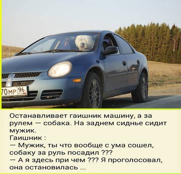 http://sh.uploads.ru/t/XDFa9.jpg