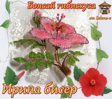 http://sh.uploads.ru/t/XPxGT.jpg