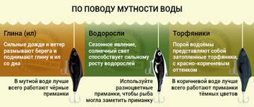 http://sh.uploads.ru/t/XUEc3.jpg