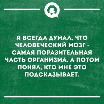 http://sh.uploads.ru/t/Xcd3u.jpg
