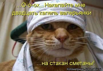 http://sh.uploads.ru/t/ZFn9X.jpg