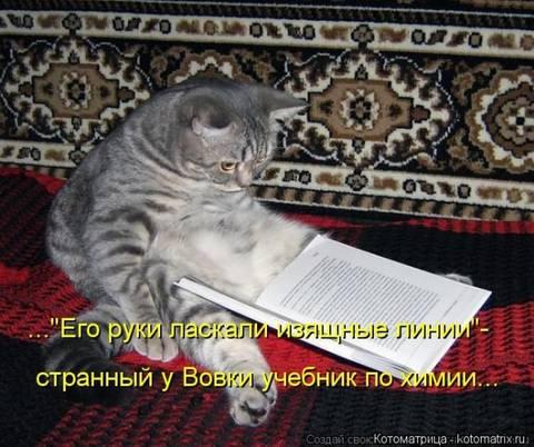 http://sh.uploads.ru/t/ZUdhs.jpg