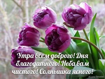 http://sh.uploads.ru/t/ZceWB.jpg