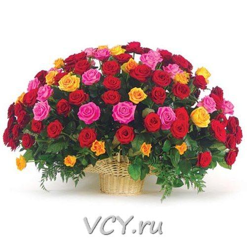 http://sh.uploads.ru/t/ZktlR.jpg