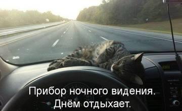 http://sh.uploads.ru/t/Zna3N.jpg