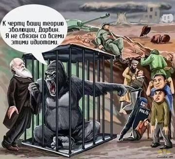 http://sh.uploads.ru/t/aCBcI.jpg