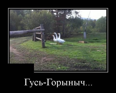 http://sh.uploads.ru/t/aIC59.jpg