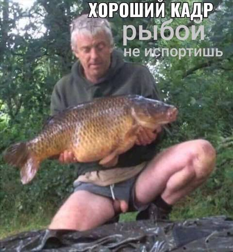 http://sh.uploads.ru/t/aJRsY.jpg