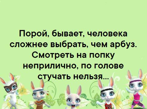 http://sh.uploads.ru/t/bFGko.png