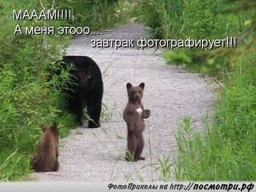 http://sh.uploads.ru/t/bOEpd.jpg