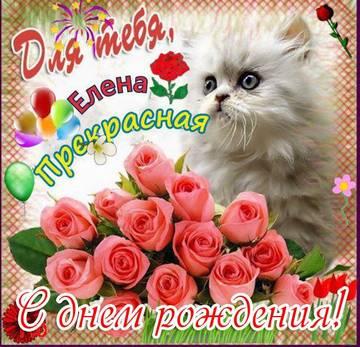 http://sh.uploads.ru/t/bRfwO.jpg