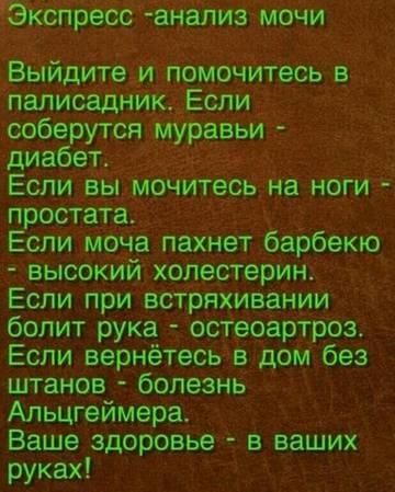http://sh.uploads.ru/t/c2b9H.jpg
