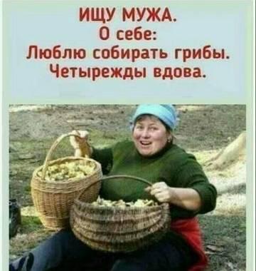 http://sh.uploads.ru/t/cLx7a.jpg