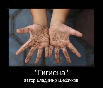 http://sh.uploads.ru/t/cRNoq.jpg