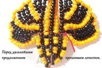http://sh.uploads.ru/t/cvHFy.jpg