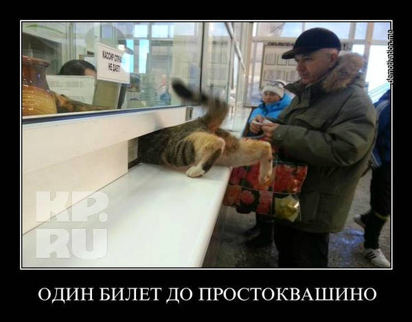 http://sh.uploads.ru/t/d8BGc.jpg