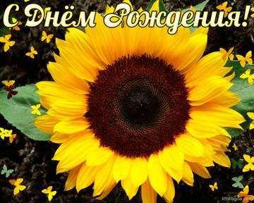 http://sh.uploads.ru/t/dMAh2.jpg