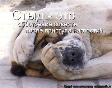 http://sh.uploads.ru/t/dgpEQ.jpg