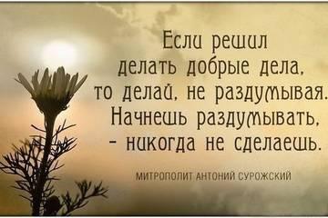 http://sh.uploads.ru/t/eQo0J.jpg