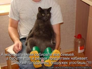 http://sh.uploads.ru/t/eRMsf.jpg