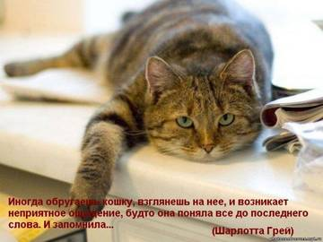 http://sh.uploads.ru/t/ezi0a.jpg