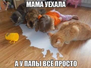 http://sh.uploads.ru/t/f0S5p.jpg