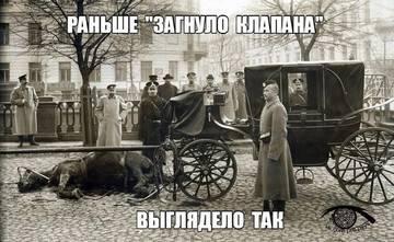 http://sh.uploads.ru/t/f9Xhg.jpg