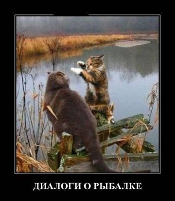 http://sh.uploads.ru/t/fATFr.jpg