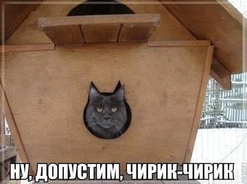http://sh.uploads.ru/t/fHuJ5.jpg