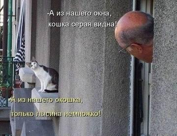 http://sh.uploads.ru/t/fTUq8.jpg
