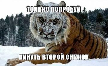http://sh.uploads.ru/t/fYOFH.jpg