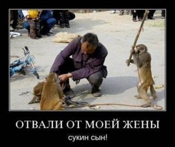 http://sh.uploads.ru/t/fcpwd.jpg