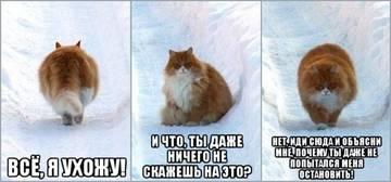 http://sh.uploads.ru/t/fdqnS.jpg