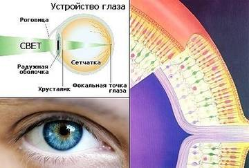 http://sh.uploads.ru/t/fn8yP.jpg