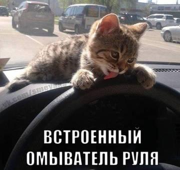 http://sh.uploads.ru/t/fvFSE.jpg