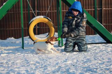 http://sh.uploads.ru/t/gbGeo.jpg