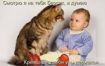 http://sh.uploads.ru/t/giydc.jpg