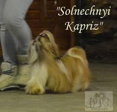 http://sh.uploads.ru/t/hLbyF.jpg